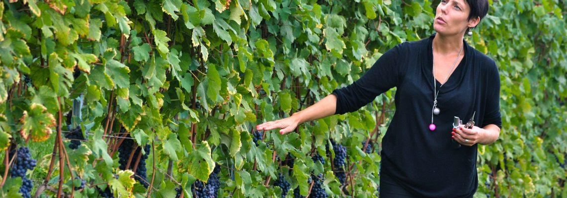 Winemaker Riikka Sukula